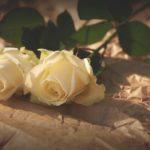 【血型知識】不同血型的男性習慣怎樣的戀愛?  O型男特別容易出軌?!