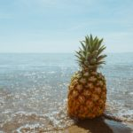 補充滿滿的鳳梨酵素,讓你健康每一天!
